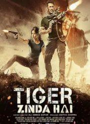 点击播放《老虎是活的》