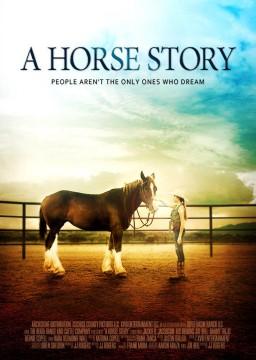 点击播放《马的故事》
